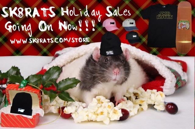 SKR8ATS Christmas AD 2017